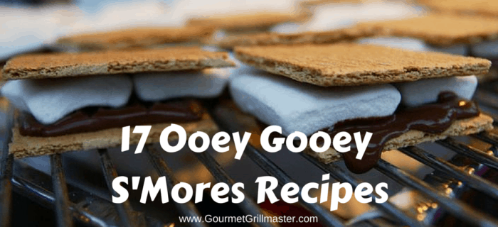 17 Ooey Gooey S'Mores Recipes (1)