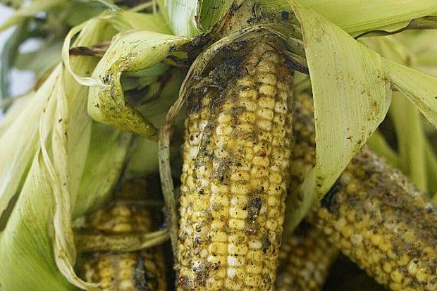 Cilantro Pesto Corn